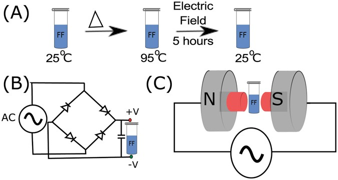 A Dissolved Peptide Was Allowed To Cool Down From 95 C Room Temperature While Incubating In The Presence Of Electric Field B Set Up
