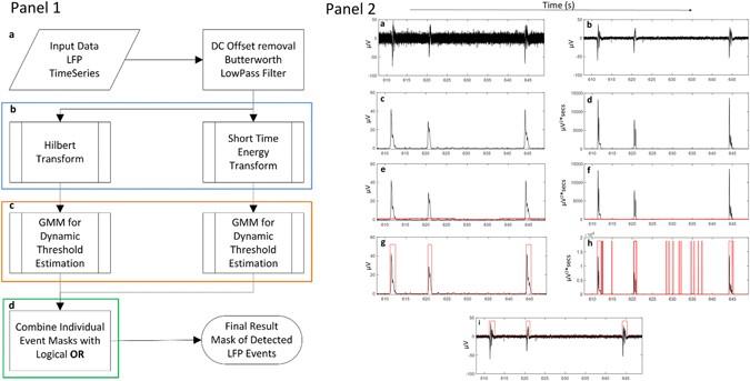 High-Throughput Analysis of in-vitro LFP