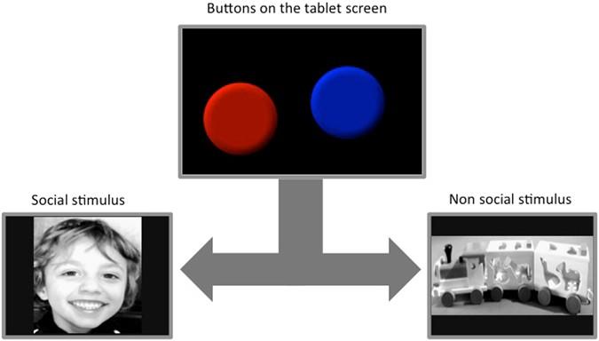 Reduced preference for social rewards in a novel tablet based task