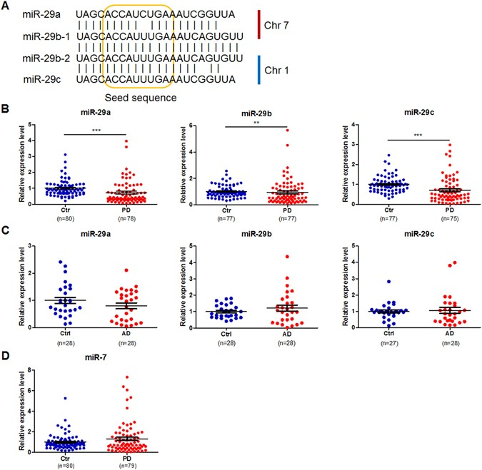 Downregulation of blood serum microRNA 29 family in patients