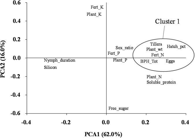 Physiological characteristics of rice plants and their effects on brown  planthopper (BPH) fitness traits. 7e1dc85cf