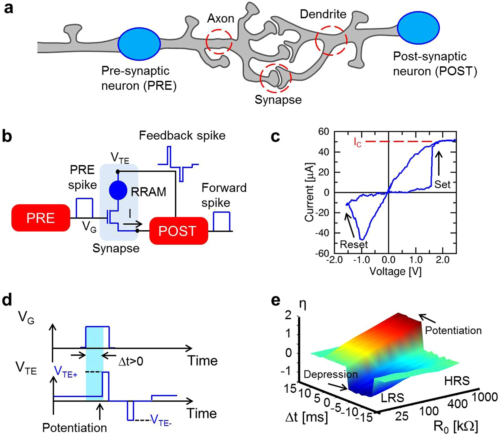Memristive Neural Network For On Line Learning And Tracking With Electronic Circuit Schematics Consisting Of Digital Analog Devices Brain Inspired Spike Timing Dependent Plasticity Scientific Reports