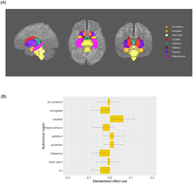 Subcortical Volume And White Matter Integrity Abnormalities In Major