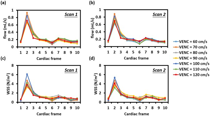 Optimized analysis of blood flow and wall shear stress in the common