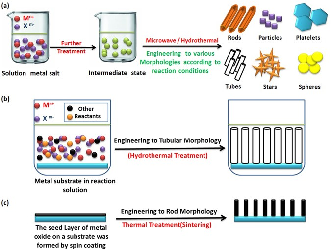 Morphology transition engineering of zno nanorods to nanoplatelets schematic illustration for the morphology engineering of metal oxides by bottom up approach malvernweather Gallery