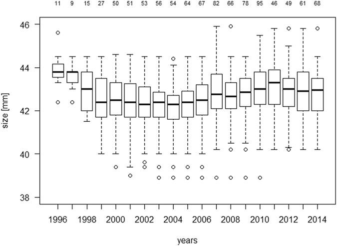Rare catastrophic events drive population dynamics in a bat