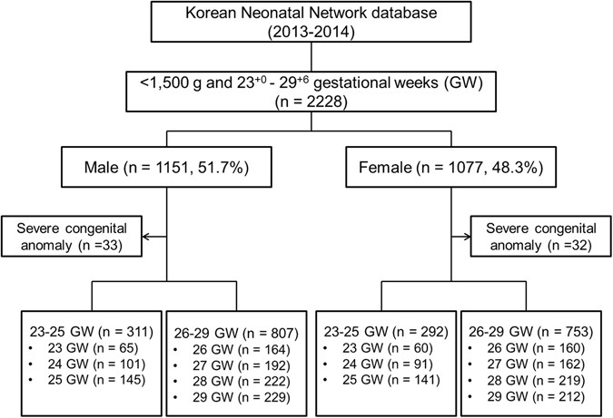 Gestational age-specific sex difference in mortality and