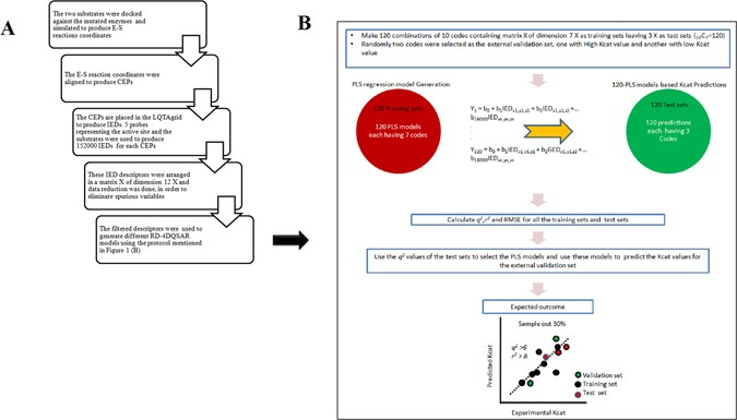 A receptor dependent- 4D QSAR approach to predict the
