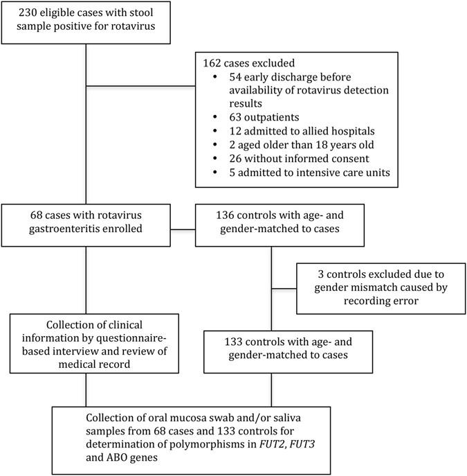 Genetic Susceptibility to Rotavirus Gastroenteritis and