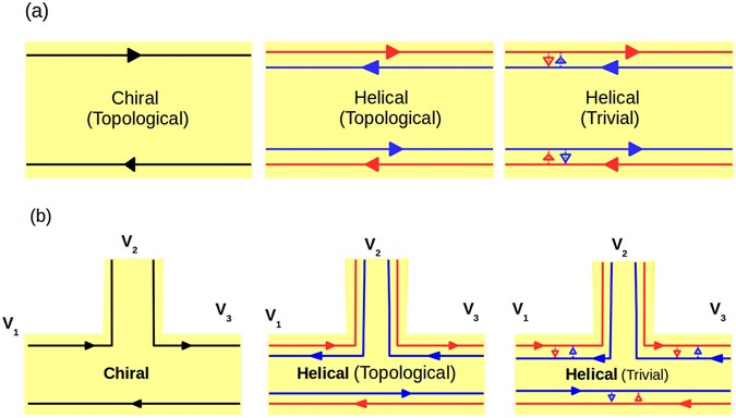 Probing helicity and the topological origins of helicity via non