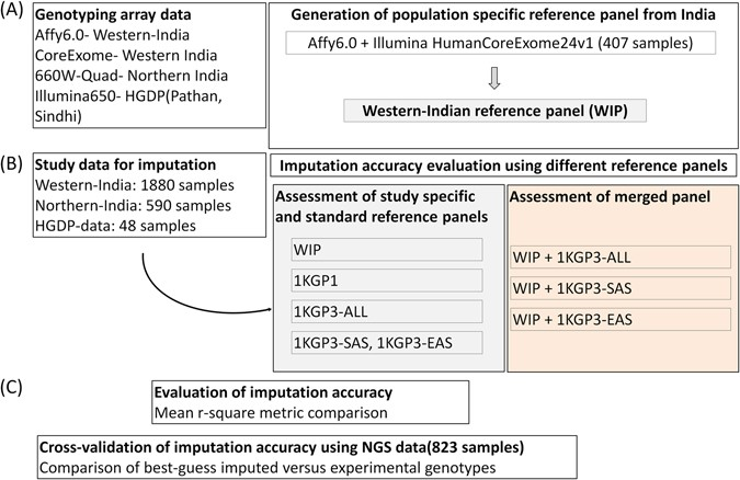 inclusion of population specific reference panel from india to the