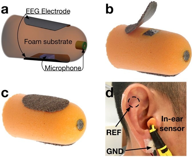 hearables multimodal physiological in ear sensing scientific reports