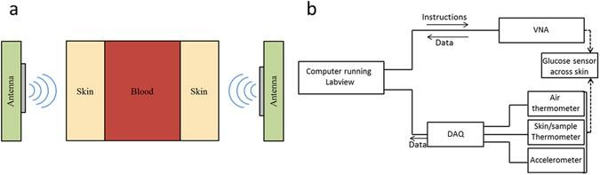 A Glucose Sensing System Based on Transmission Measurements at