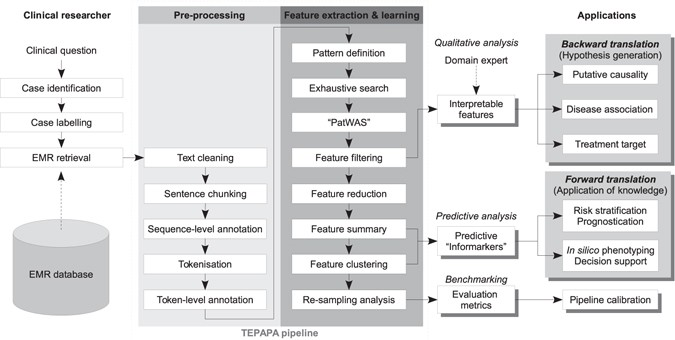 TEPAPA: a novel in silico feature learning pipeline for