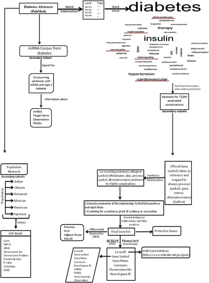 T2diacod A Gene Atlas Of Type 2 Diabetes Mellitus Associated