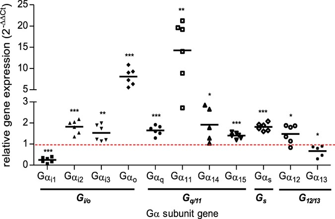 G Protein Stoichiometry Dictates Biased Agonism Through Distinct