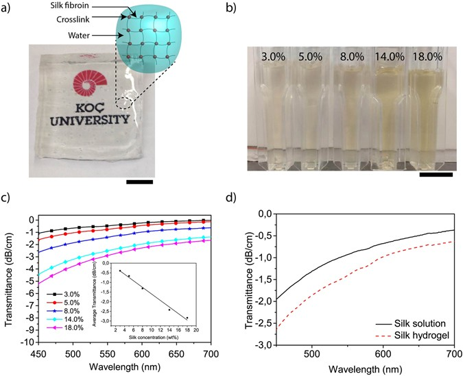 Silk-hydrogel Lenses for Light-emitting Diodes | Scientific Reports