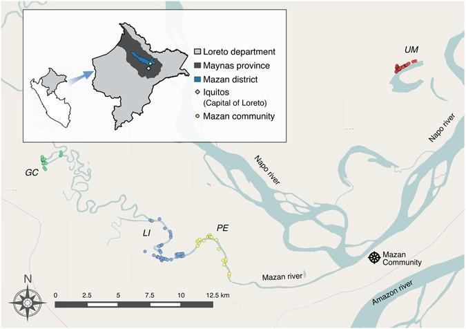 Micro-epidemiology and spatial heterogeneity of P   vivax