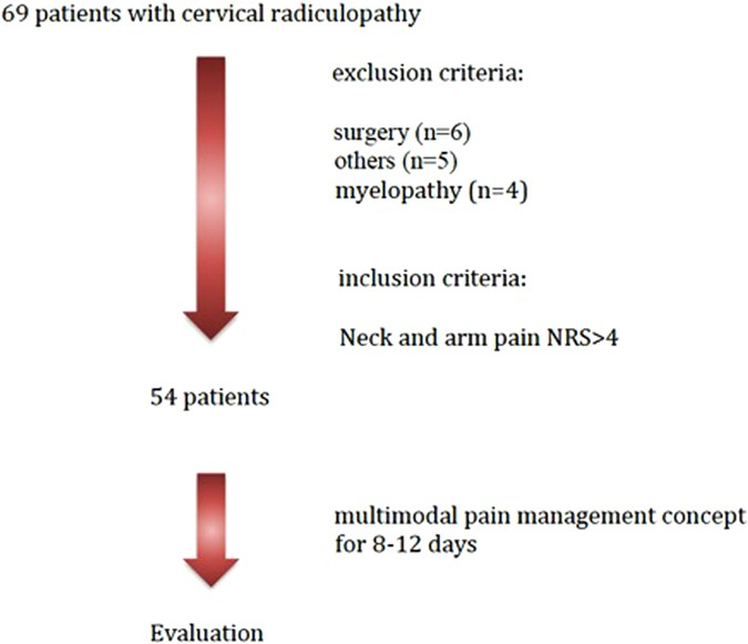 Effectiveness of a multimodal pain management concept for