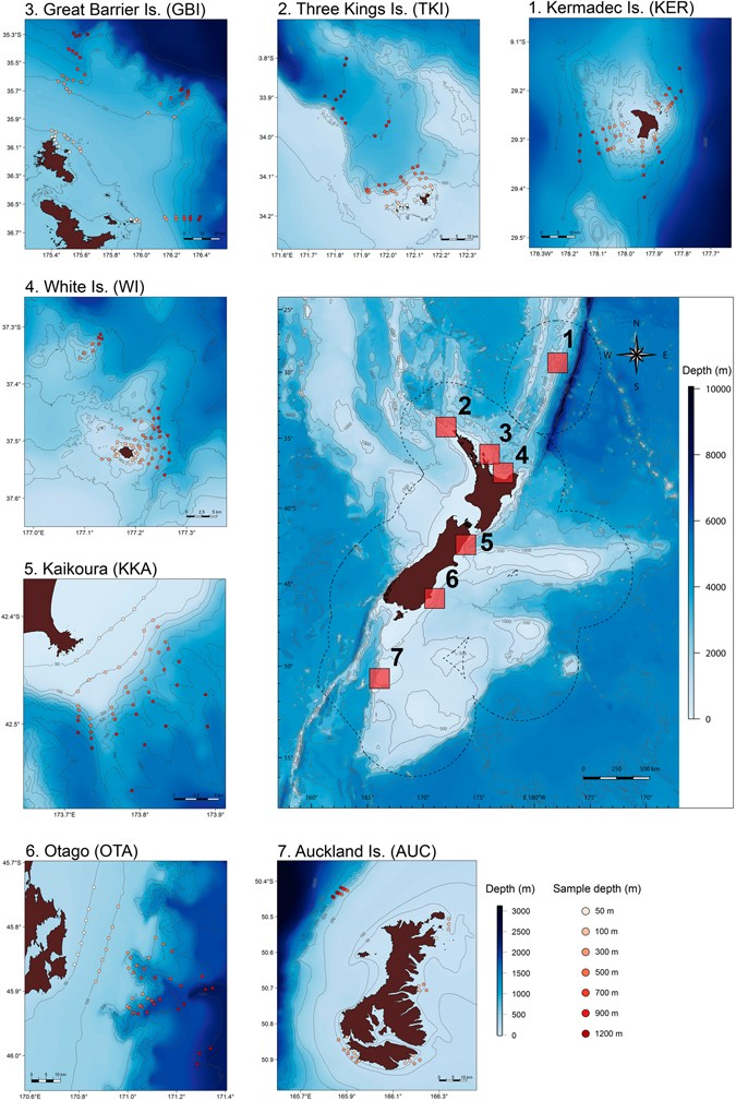 Effects of latitude and depth on the beta diversity of new zealand effects of latitude and depth on the beta diversity of new zealand fish communities scientific reports sciox Choice Image