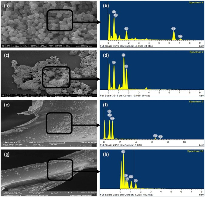 Defluoridation Technology For Drinking Water And Tea By Green Synthesized Fe 3 O 4 Al 2 O 3 Nanoparticles Coated Polyurethane Foams For Rural Communities Scientific Reports