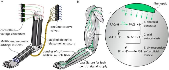 Light Triggered Soft Artificial Muscles Molecular Level