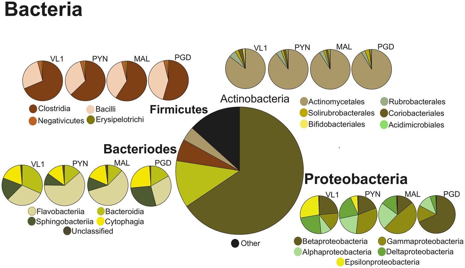 Searching For Signatures Across Microbial Communities Metagenomic Sp Reguler Axis Hitz Analysis Of Soil Samples From Mangrove And Other Ecosystems Scientific Reports