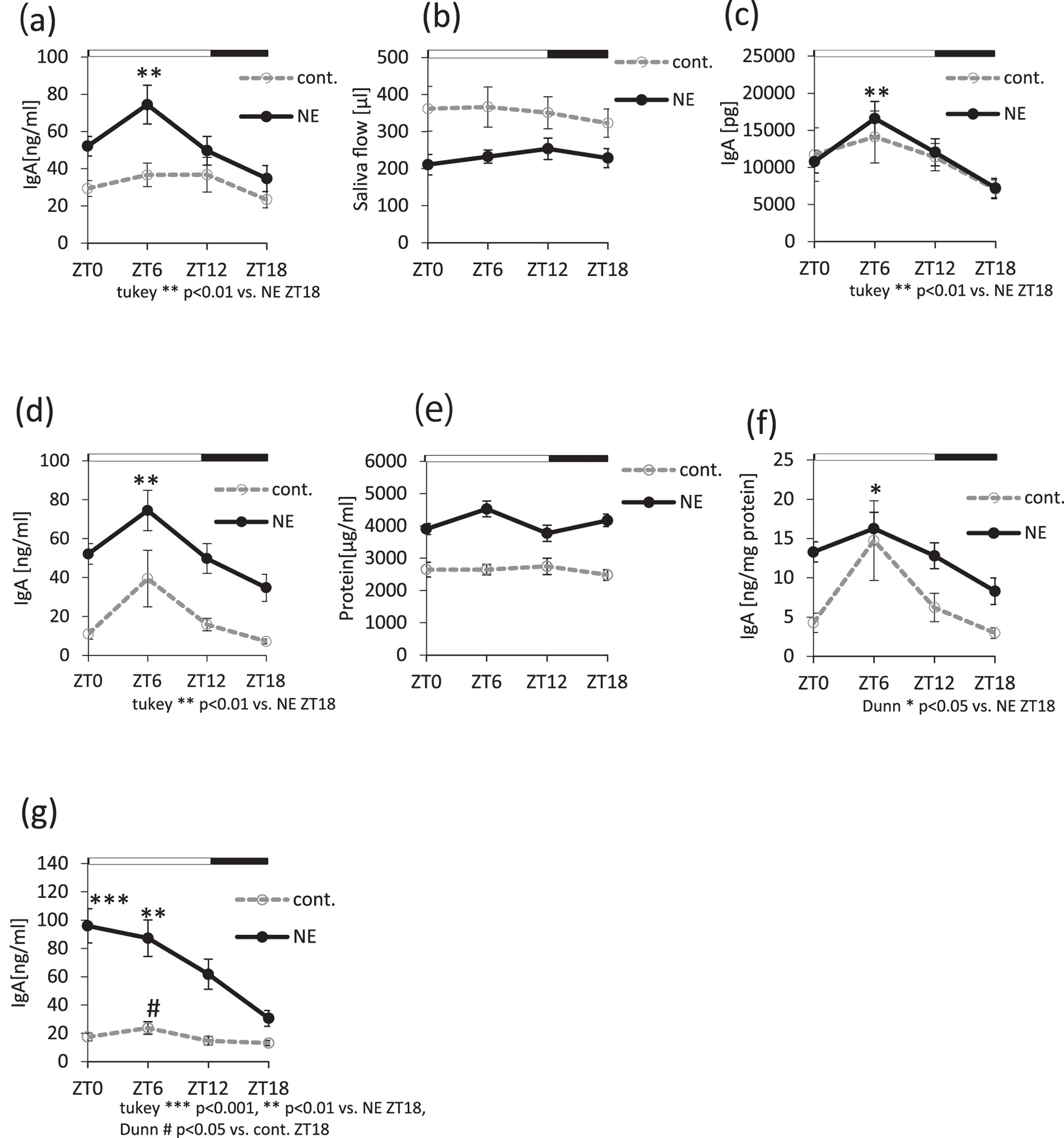 Circadian clock dependent increase in salivary iga secretion circadian clock dependent increase in salivary iga secretion modulated by sympathetic receptor activation in mice scientific reports falaconquin