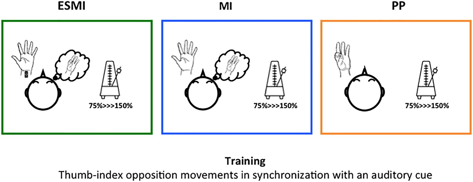 Provision Of Somatosensory Inputs During Motor Imagery Enhances Figure 4 Block Diagram Emg Signal Behaviour From Human Index Learning Induced Plasticity In Cortex Scientific Reports