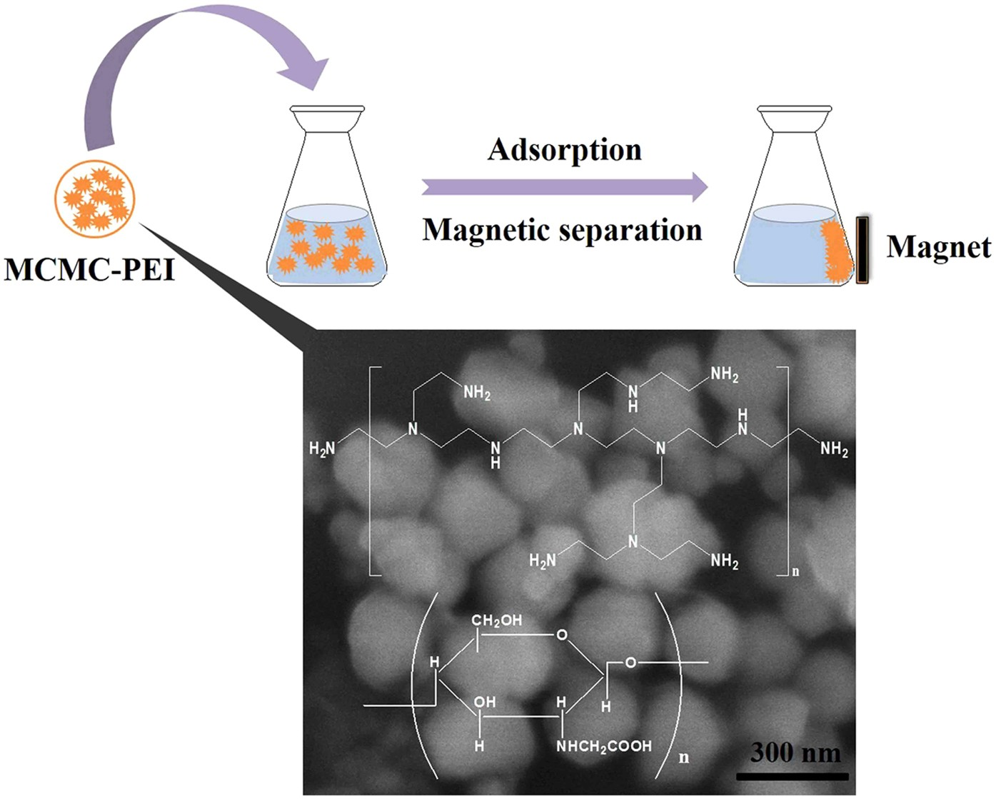 Rapid removal of Pb(II) from aqueous solution using branched