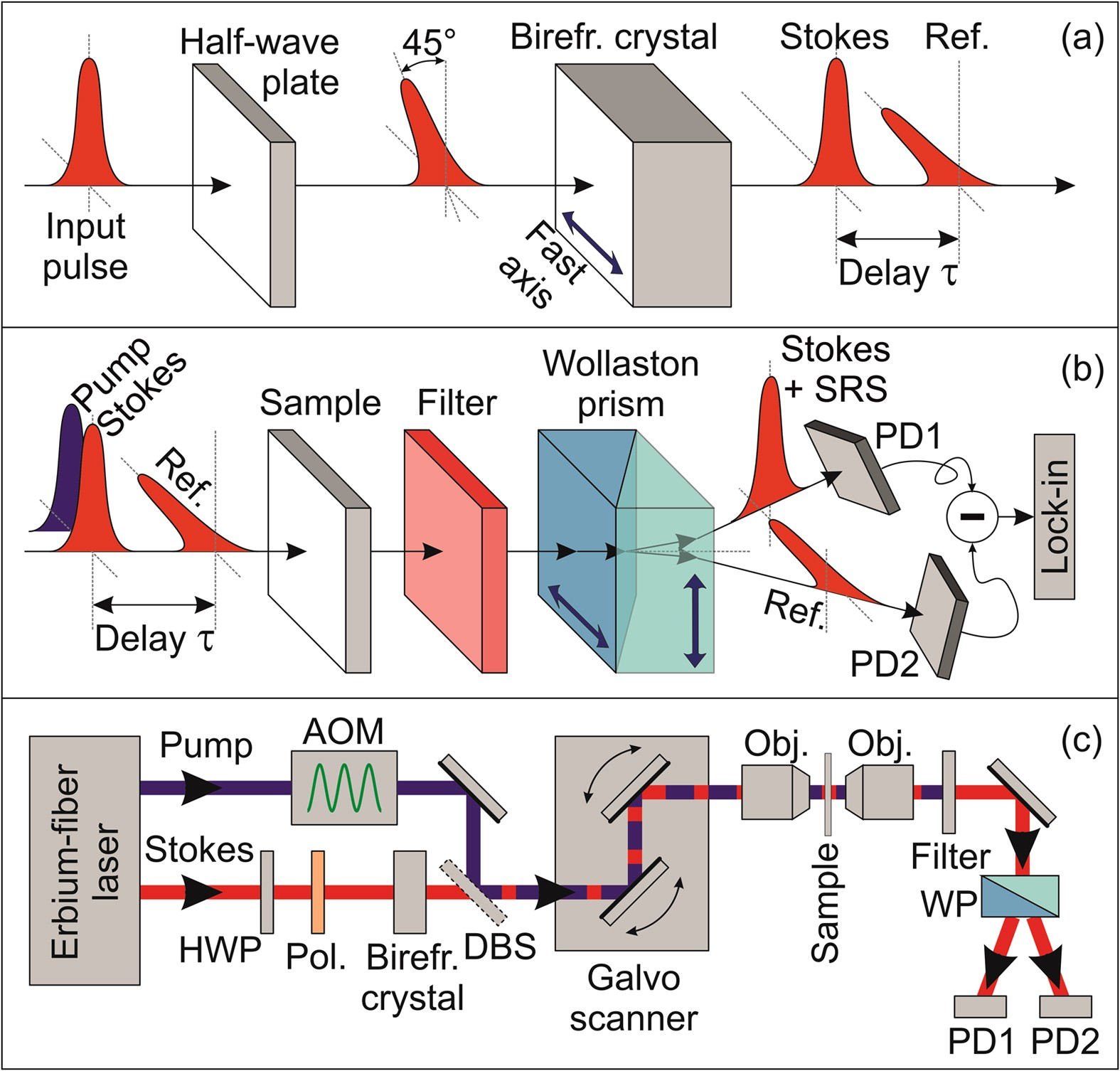 In Line Balanced Detection Stimulated Raman Scattering Microscopy Amplifiers And Lockin Simplified Schematic All Scientific Reports