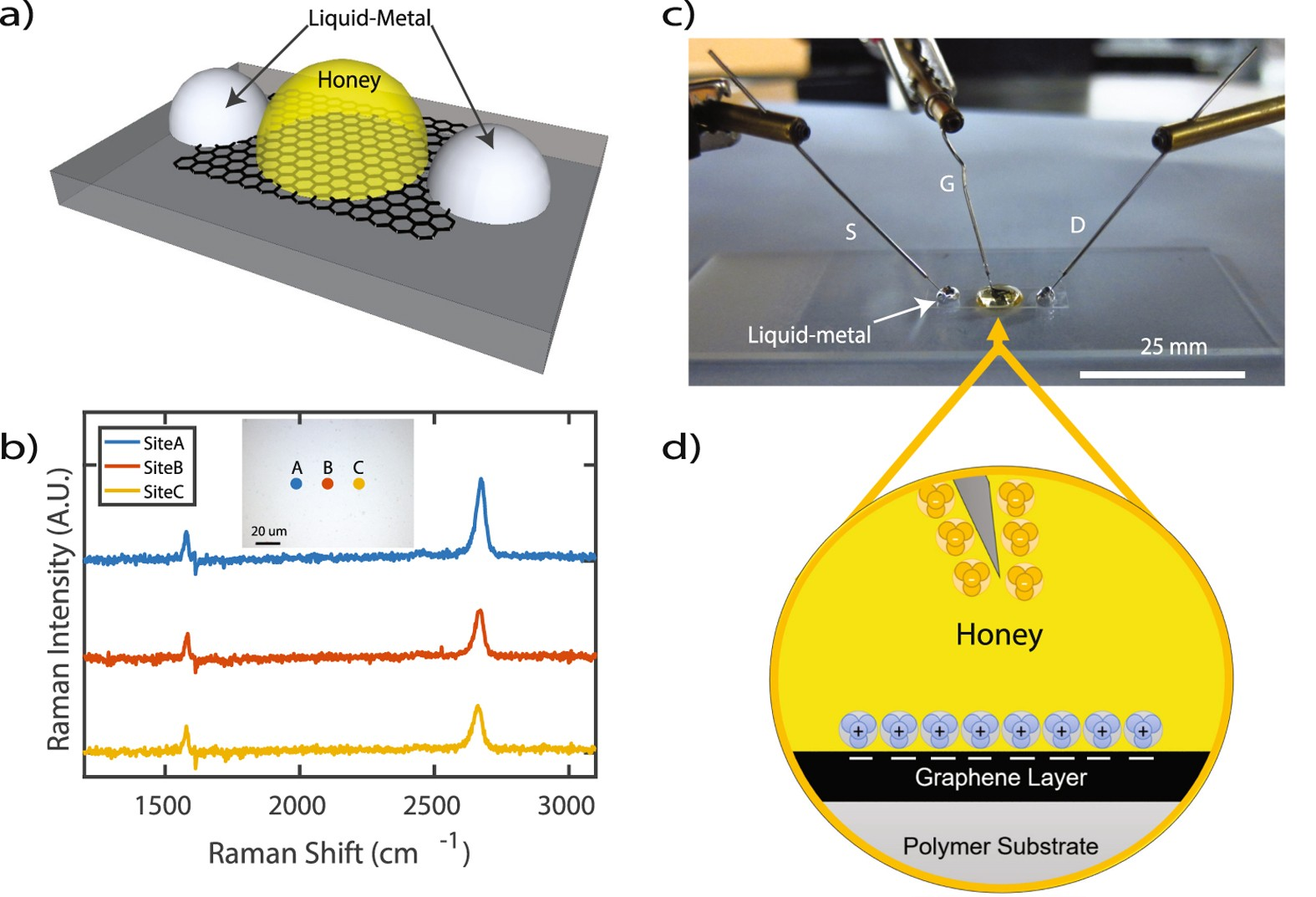 Rapid Fabrication Of Graphene Field Effect Transistors With Liquid Lcr Meter Electro Science Industries For Sale Electroniccircuits Metal Interconnects And Electrolytic Gate Dielectric Made Honey Scientific Reports