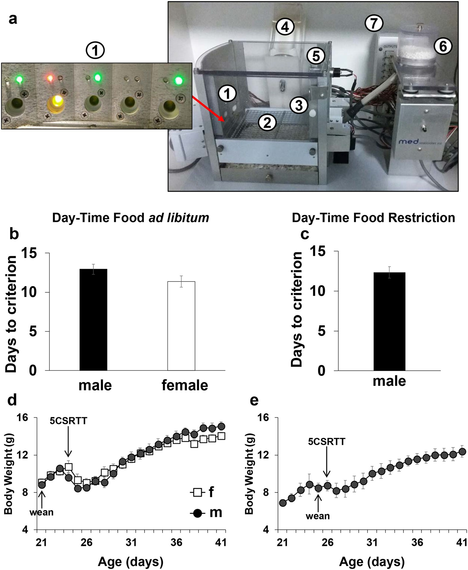 Attentional Control In Adolescent Mice Assessed With A Modified Five Above Is Schematic Diagram Of An Lm741 Light Dark Sensor Circuit Choice Serial Reaction Time Task Scientific Reports