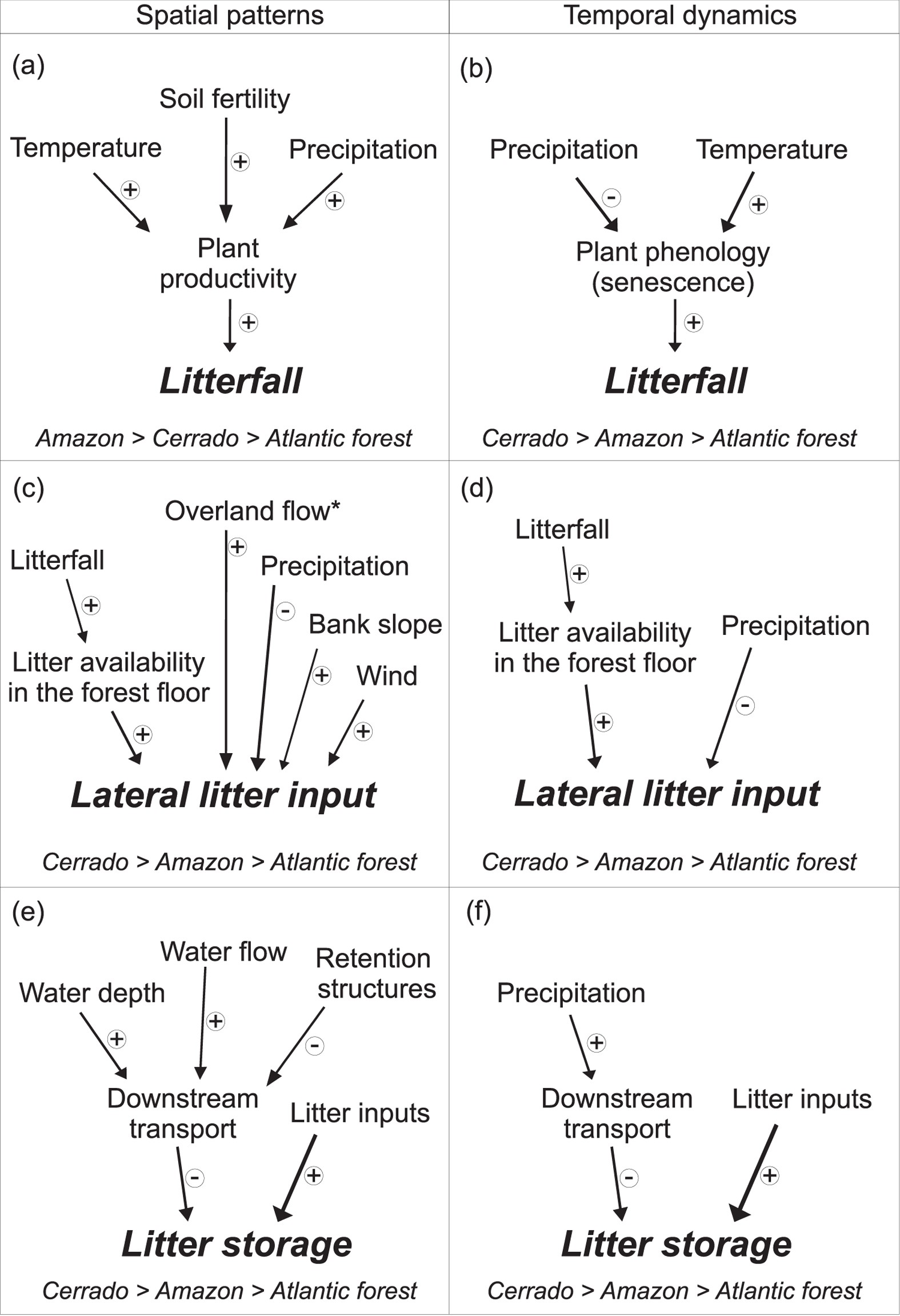 Plant Litter Dynamics In The Forest Stream Interface Precipitation Is A
