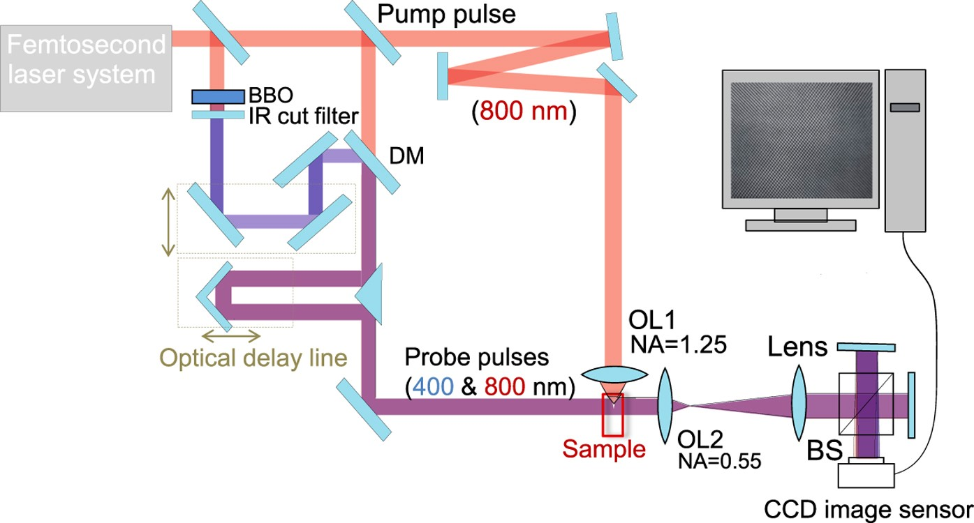 Two-color pump-probe interferometry of ultra-fast light