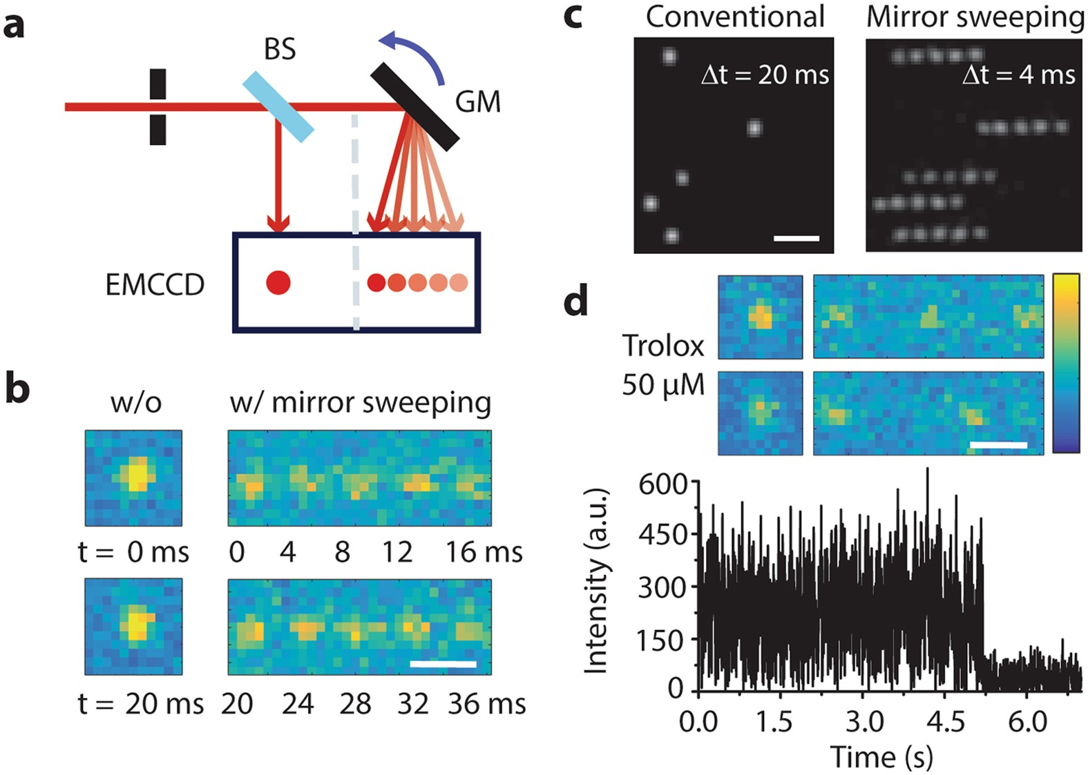 Spatially encoded fast single-molecule fluorescence spectroscopy ...