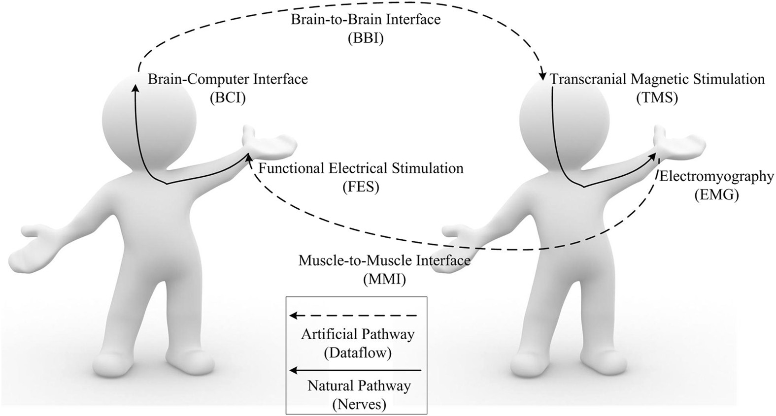 Human To Closed Loop Control Based On Brain Interface Figure 2 Block Diagram Of The Proposed System For Emg Signal And Muscle Scientific Reports