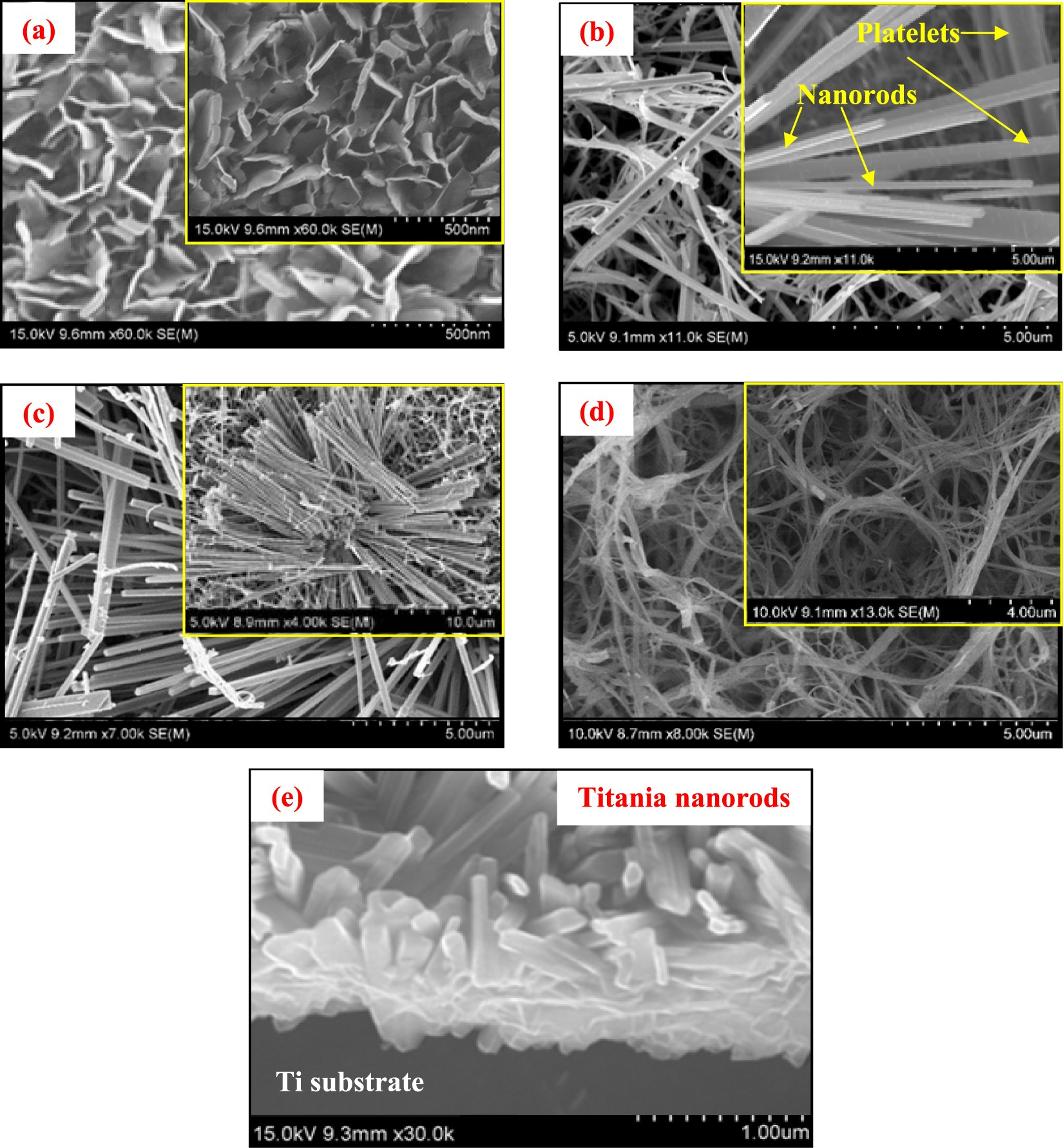 Improved electrochemical properties of morphology controlled titania titanate nanostructures prepared by in situ hydrothermal surface modification of