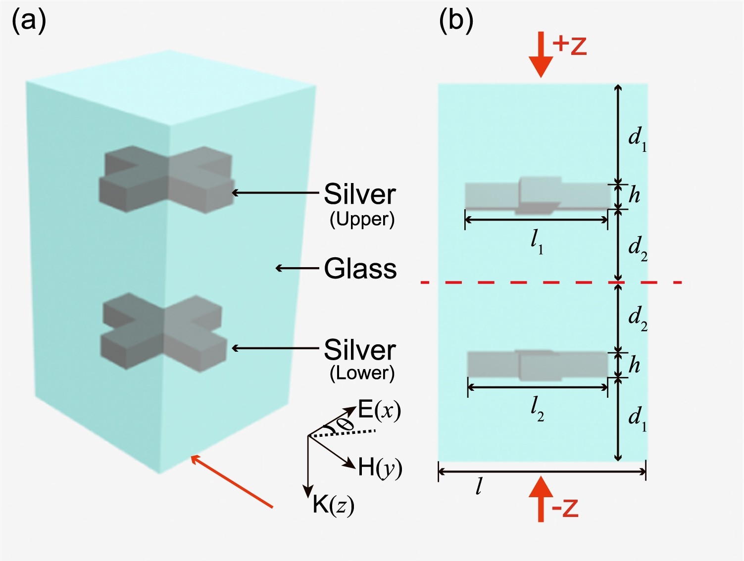 Switching the unidirectional reflectionlessness by polarization in ...