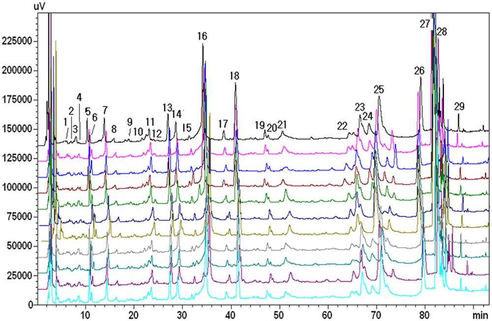 JinqiJiangtang tablets for pre-diabetes: A randomized