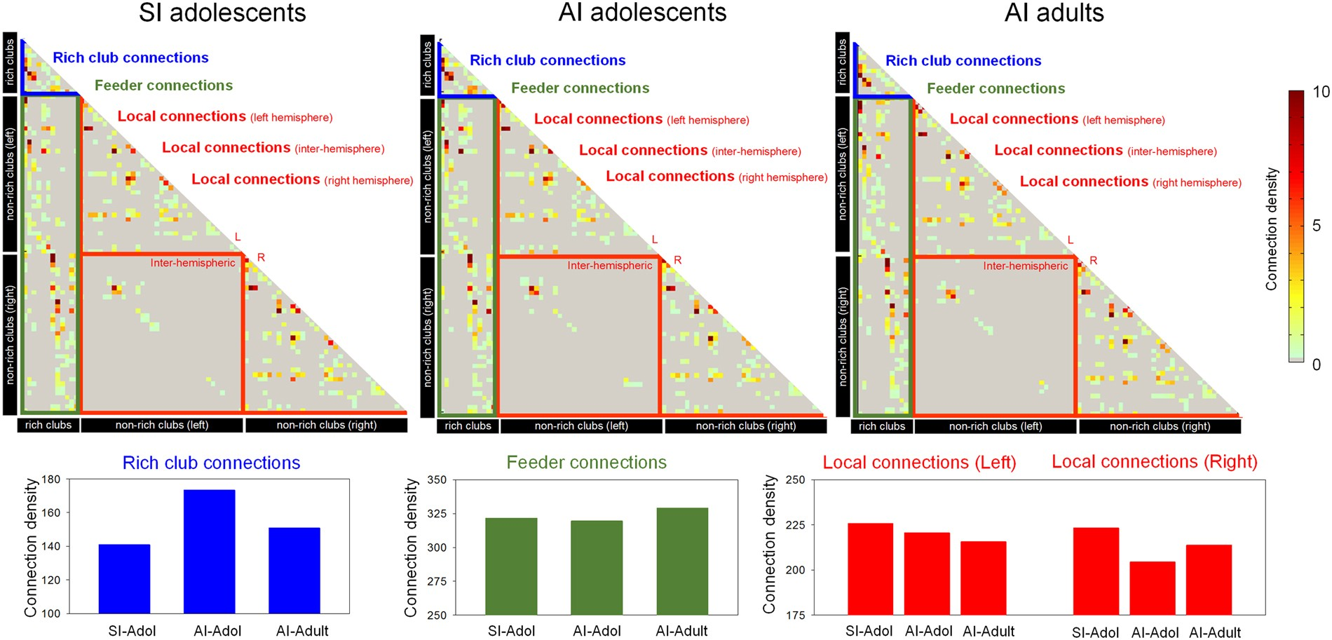 Network Attributes Underlying Intellectual Giftedness In The Rj 48c T1 Wiring Diagram Developing Brain Scientific Reports