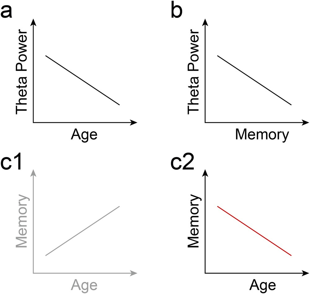 Temporally and spatially distinct theta oscillations dissociate a  language-specific from a domain-general processing mechanism across the age  trajectory ... cd7e5cc519117