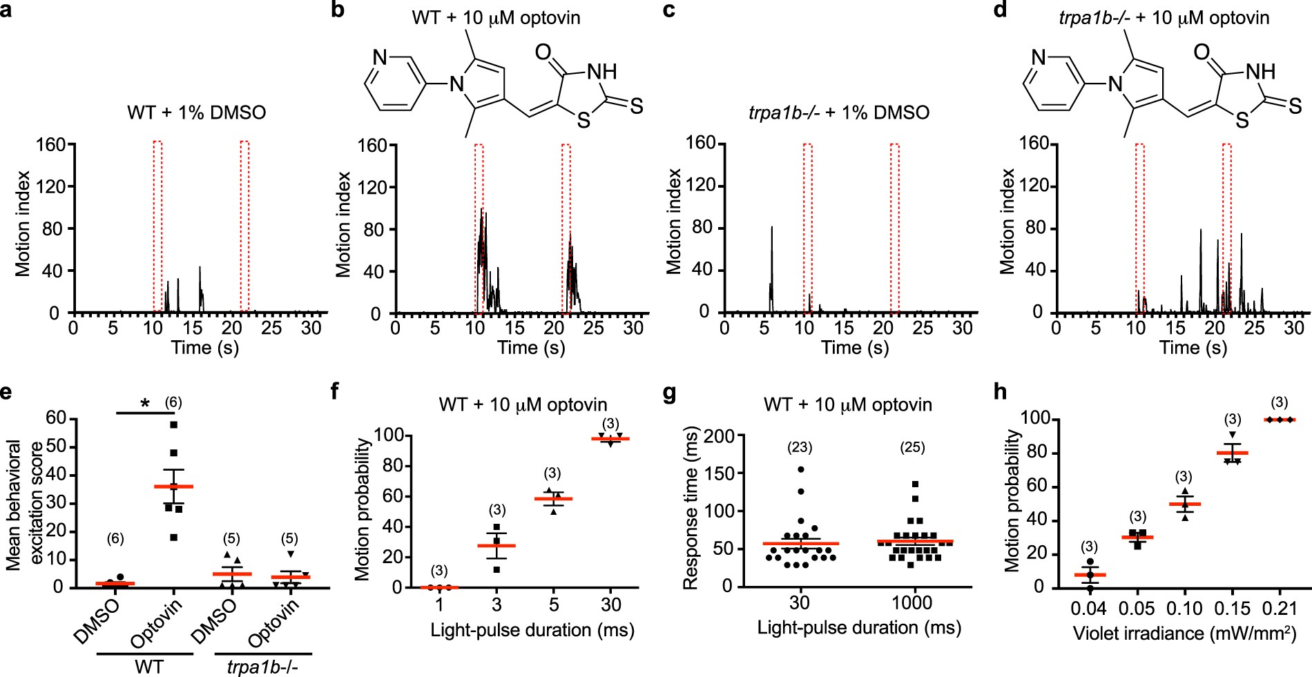 A High Conductance Chemo Optogenetic System Based On The Vertebrate There Are Several Advantages Of Using Ring Circuit Channel Trpa1b Scientific Reports