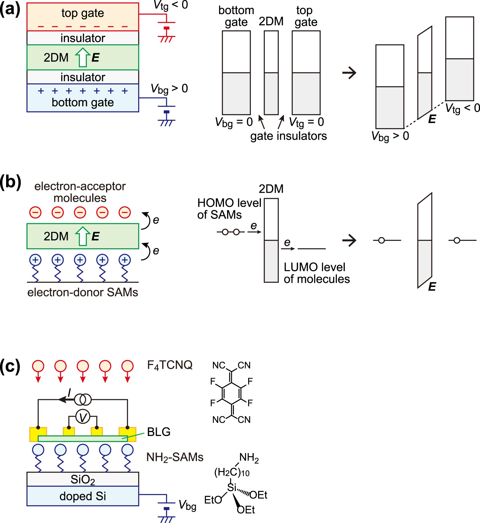 Difference in gating and doping effects on the band gap in bilayer graphene  | Scientific Reports