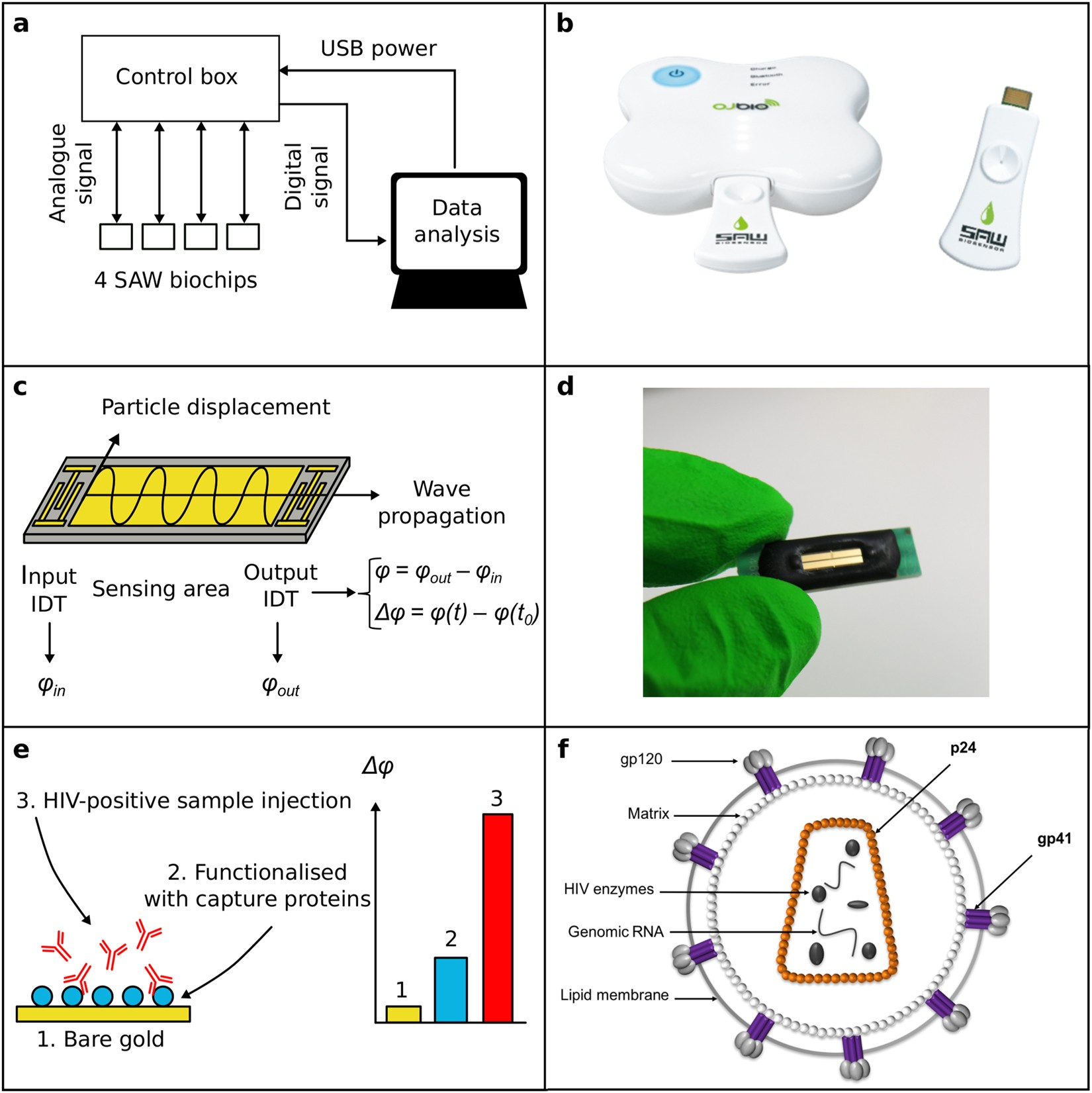 Towards An Ultra Rapid Smartphone Connected Test For Infectious