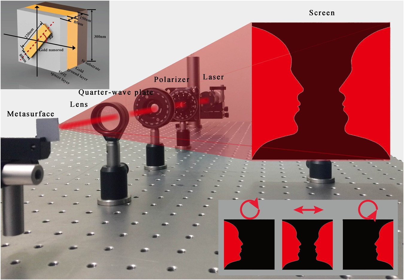 Geometric phase generated optical illusion scientific reports reviewsmspy