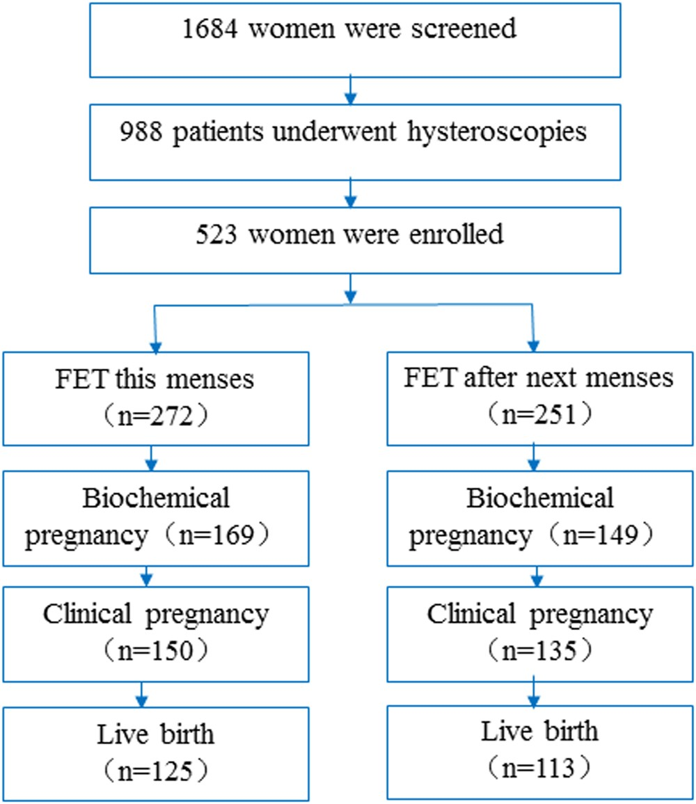 The effect of frozen-thawed embryo transfer performed