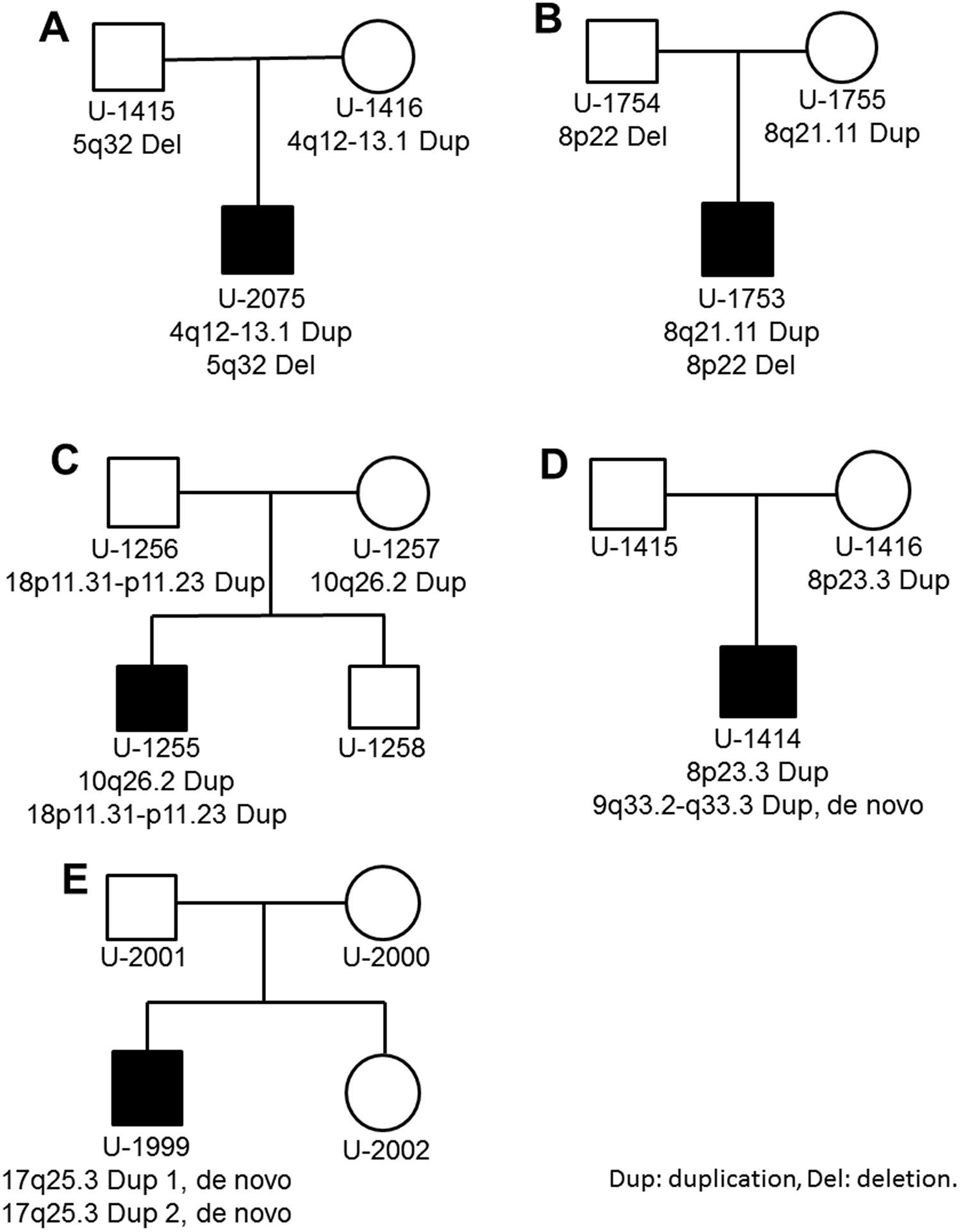 High resolution analysis of rare copy number variants in patients