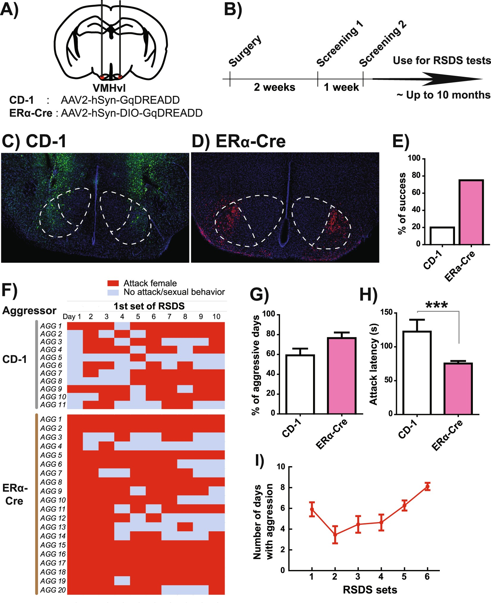 Establishment Of A Repeated Social Defeat Stress Model In Female Cable Tester Circuit Moreover Diagram Schematic On Mice Scientific Reports