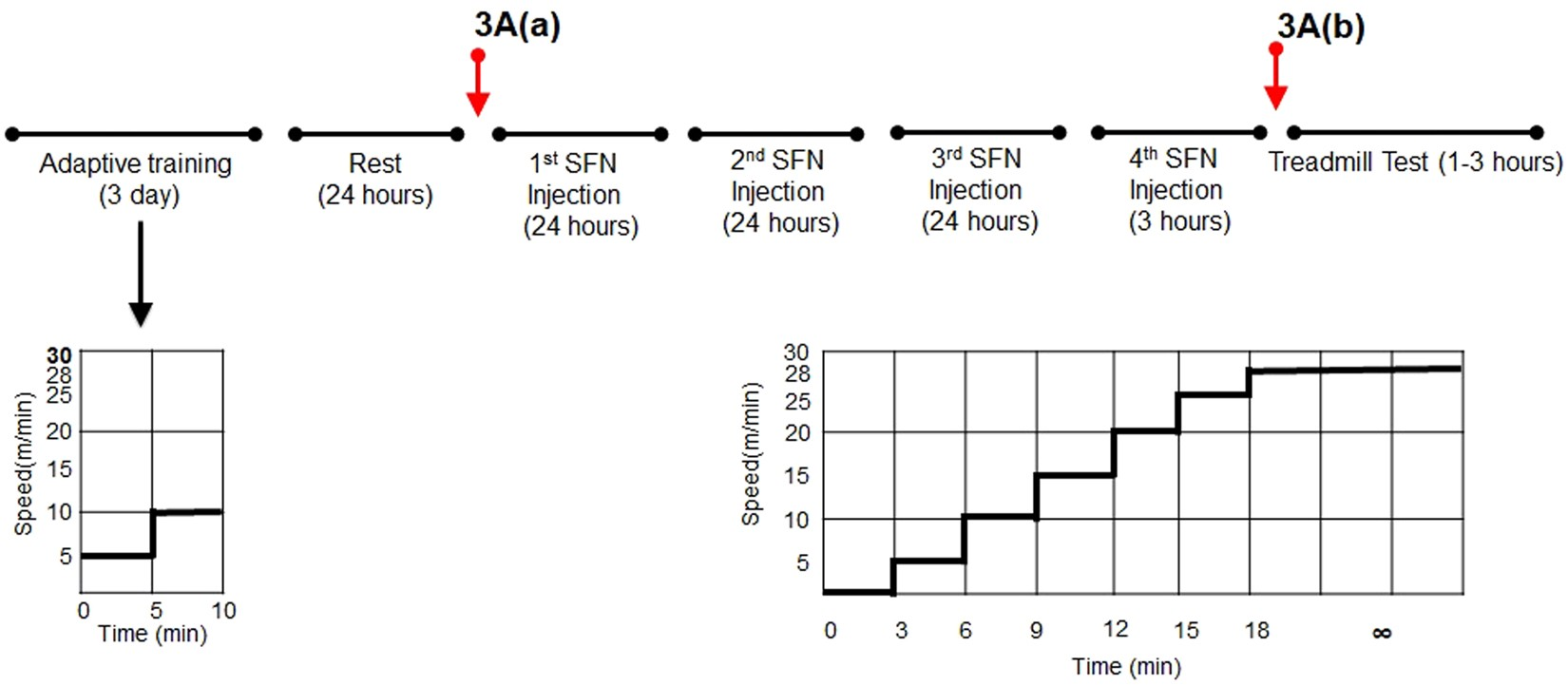Nuclear Factor Erythroid Derived 2 Like 2 Activation Increases
